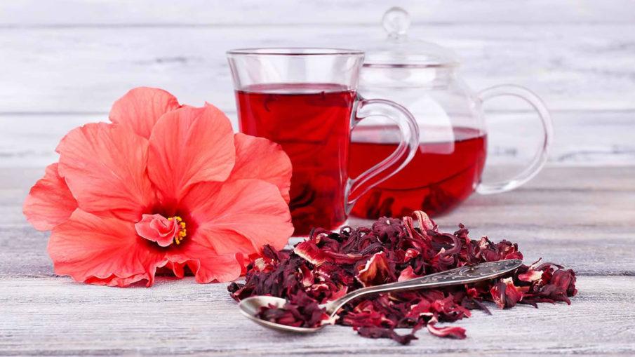 Секреты чая каркаде - состав, влияние на организм, как выбрать и заварить