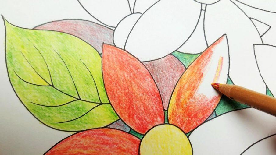 Раскраски антистресс - кому и для чего?